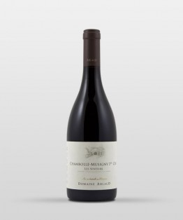 Chambolle-Musigny 1er cru les Sentiers 2015
